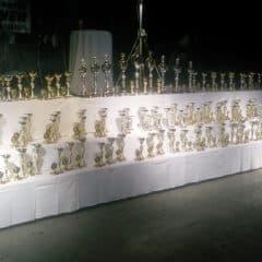 Siegerehrung in der Schachnerhalle